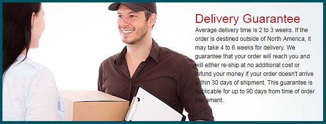 shipping guarantee